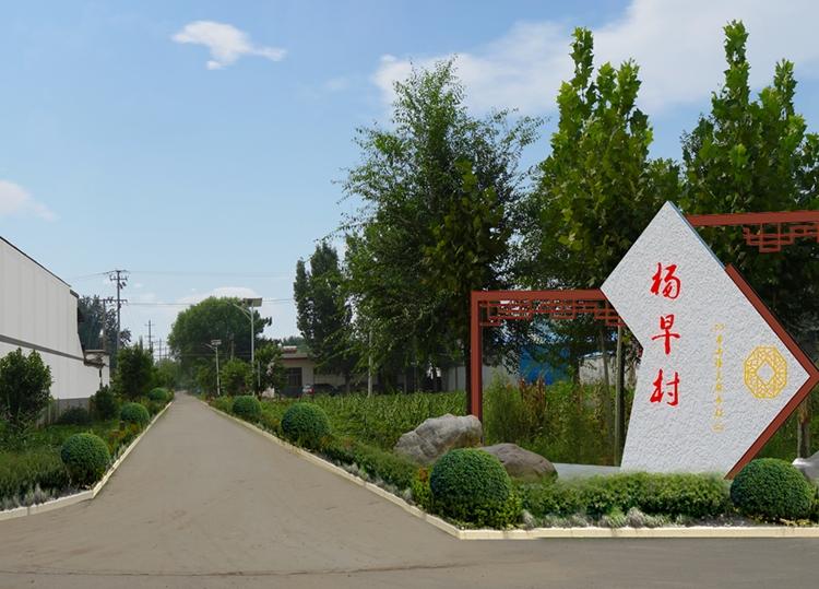 羊山杨早村